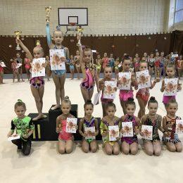 2011m.g. gimnasčių apdovanojimai