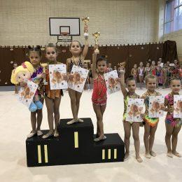 2012 g.m. gimnasčių apdovanojimai