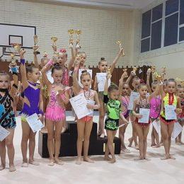 2011m.g. gimnasčių grupės apdovanojimas