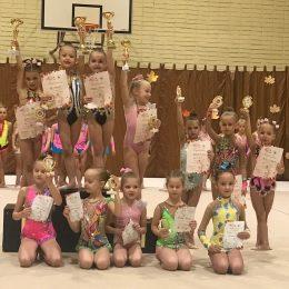 2012-2013m.g. gimnasčių apdovanojimai