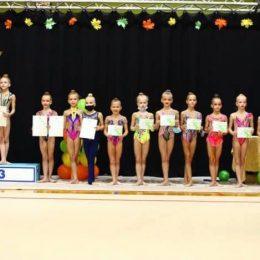 2011 m.g. grupė apdovanojimas