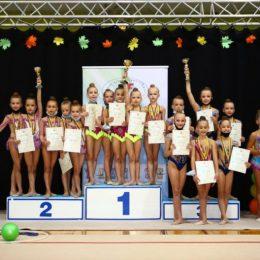 2011m.g. grupinių pratimų apdovanojimas
